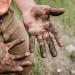 L'emploi : une solution insuffisante pour lutter contre la pauvreté